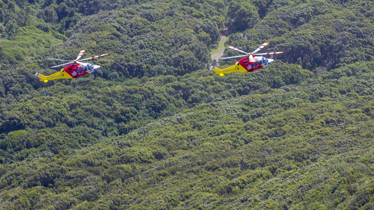 two westpac rescue helicopters flying over bushland
