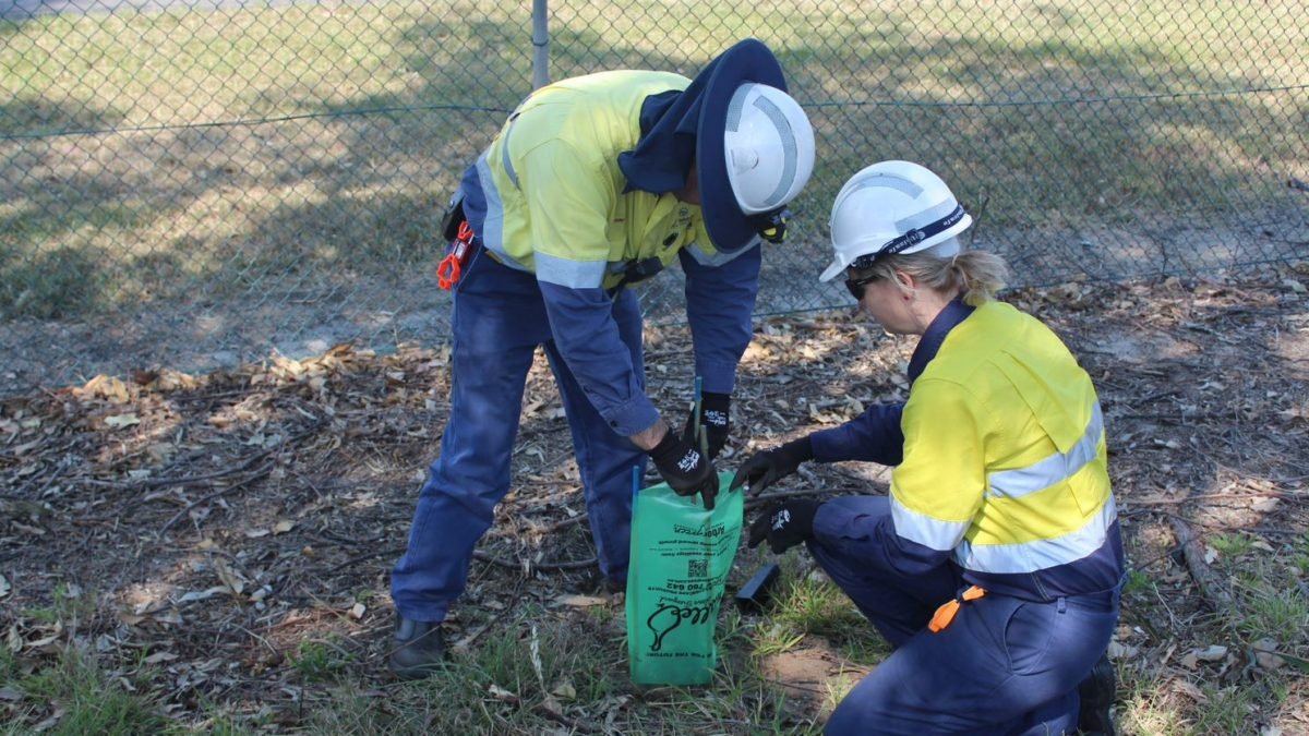 Two Port waratah employees planting a tree